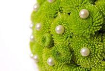 Green flowers / by The Sweet Pea Jo-Anne Hardy
