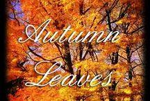 ❥ Autumn