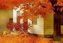❥ Autumn Cottage