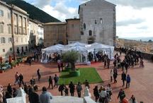 Mostra del Tartufo di Gubbio 2012 / La XXXI edizione della Mostra mercato del tartufo bianco e dei prodotti agroalimentari di Gubbio