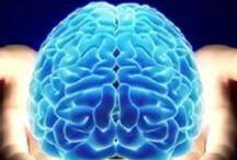 Neurociencia / Todo los relacionado a las neuronas, a los nervios, sistema nervioso, cerebro, reflejos, aprendizaje, anomalías o enfermedades, estudios.