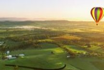 Top 10 Things To Do | Hunter Valley / Discover picturesque gardens, scenic aerial views, chocolate, golf, pamper sessions and let's not forget wine! www.mountpleasantwines.com.au