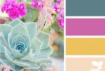 Moodboards colors