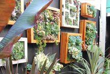 Vertical gardening / Vertikale Gartenideen