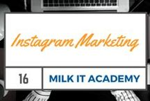 Instagram Marketing / Tips On Building A Following On Instagram For Your Business: http://www.milkdigitalstrategy.com.au/blog/?s=instagram