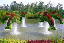 Landscaping Design / by Taylormade Landscapes, LLC A Las Vegas Landscaping Company