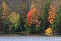 Travel and Beauty In the Berkshires