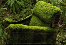 tuinstoel / garden chair