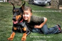 Perfect World with #Doberman / We can't help admiring this wonderful #Doberman Breed