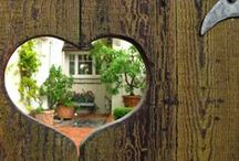 Home is where the heart is... / 'your true home is with the person or in the place that you love most'