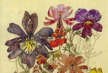 Florals / Floral inspiration for textile designs / pattern repeats.