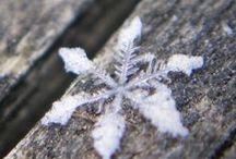 Ihmeellinen talvi