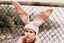 P l a y b o y  ⎮ / BunnyEars  ⎮