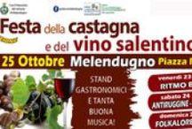 Eventi a Melendugno / Eventi in Puglia nella città di Melendugno (Le)