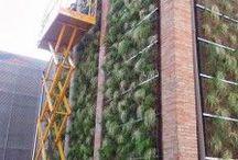 VertiCal GarDen, El Celler de Rubí, Barcelona, Spain. / Alijardín y la rehabilitación del Celler Cooperatiu de Rubí con jardines verticales