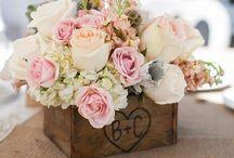 Flores BC