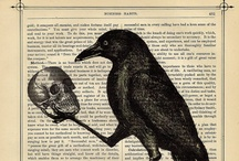 Because I like Crows and Ravens
