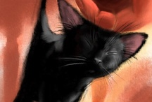 Because I like Kitty Cats!