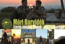 Móri Borvidék / Wineregion of Mór / Az egyik legkisebb, de leghangulatosabb borvidék a Móri Borvidék. A Vértes és a Bakony ölelésében. www.moriborvidekinfo.hu
