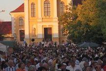 Móri rendezvények- Ősz: Kiemelt: Móri Bornapok/ Wine Days of Mór / A Móri Borvidék legnagyobb ünnepe a Móri Bornapok. 2014-ben már 80 éves. El kell jönni, ki kell próbálni, a főszerepben a móri borok és hagyományok állnak.  www.moribornapok.hu www.mor.hu www.moriborvidekinfo.hu