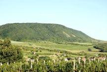Vértes hegység/ hill