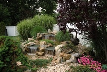 Landscapes / Landscape design inspiration
