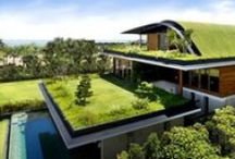 Green Energy / Examples of Green Energy incorporated into homes