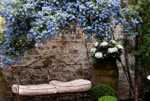 Gardens / by Cristiana Santos