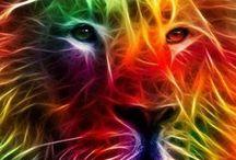 Farbenspiel / Joy of Colours