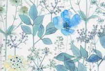 Flowers / Prints