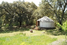 Dreams of yurts and gardens