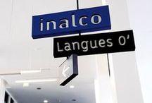 Au quotidien / Ambiances de cours, amphi, labos de langues ... Révisions studieuses ou détente !