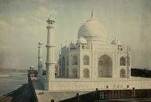 India Love. / by Celeste Burleigh
