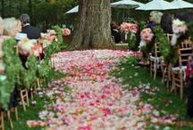 Dream Wedding / by Wendy Kesey