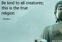 Inspirational Vegan Quotes / Inspirational Vegan Quotes