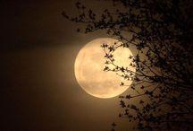 Moonlight Photography