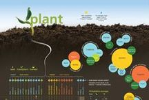 Infographics&Diagrams