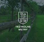 trzykolne młyny - stud farm, vineyard and aviary / logo graphic branding project visual identity