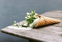 flower photography  / photo shoot flower