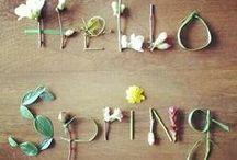 - Spring -