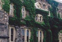 ΑΡΧΙΤΕΚΤΟΝΙΚΗ - Σπίτια, Κάστρα, Κτίσματα.... / Η ΟΜΟΡΦΙΑ ΣΤΗΝ ΑΡΧΙΤΕΚΤΟΝΙΚΗ.....