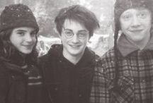 Harry Potter / Harry Potter is not just a book. To someone it is a home