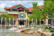 Pigeon Forge / We are lucky to be located in such a beautiful area. Discover and make amazing memories that will last a lifetime with family and friends.