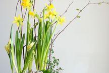 Wielkanoc / Wiosna