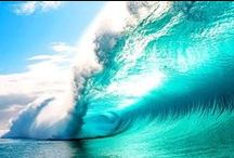 Epic Waves / The Shweet Life, search for the most epic and perfect waves!