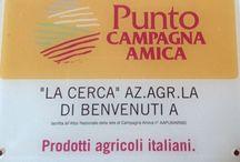Campagna Amica Coldiretti / Mercato produttori agricoltori, qualità, territorio,kmzero.