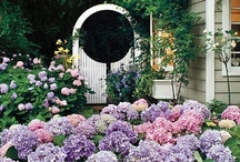ideas for outdoors / ideas for the outdoor space / by Liz Ivers
