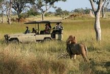 Botswana May 2014 / All Photos by T.Cellier
