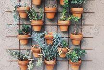 Tuin / Ideeën voor de tuin