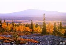 AUTUMN, Fall, Ruska